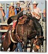 Ranch Bronc Rider Acrylic Print