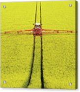 Rape Seed Spraying Acrylic Print