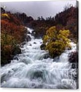 Rapid Waters Acrylic Print by Carlos Caetano