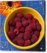 Raspberries In Yellow Bowl Acrylic Print by Garry Gay