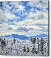 Raven's View In Winter Acrylic Print