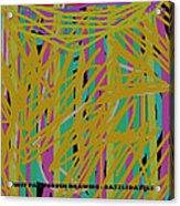 Razzledazzle Acrylic Print