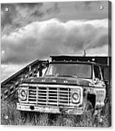 Ready For The Harvest Bw Acrylic Print