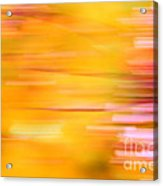 Rectangulism - S07a Acrylic Print by Variance Collections