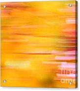 Rectangulism - S07a Acrylic Print