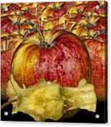Red Apples And Core Acrylic Print