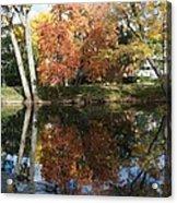 Red Cedar Reflections Acrylic Print