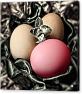 Red Classy Easter Egg Acrylic Print
