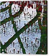 Red Crystal Refletcion Acrylic Print