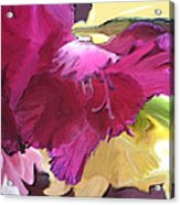 Red Flower In The Abstract Acrylic Print