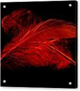 Red Ghost On Black Acrylic Print