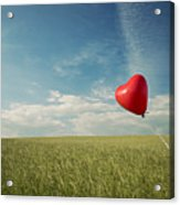 Red Heart Balloon, Blue Sky And Fields Acrylic Print