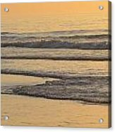 Red Heron At Sunrise Acrylic Print