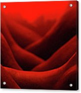 Red Hot Skin Abstract Acrylic Print