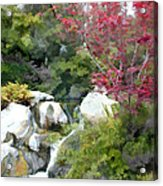 Red Maple Above The Falls Acrylic Print