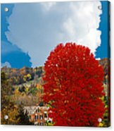 Red Maple White Cloud Acrylic Print