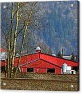 Red Matsqui Barn Acrylic Print