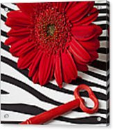 Red Mum And Red Key Acrylic Print