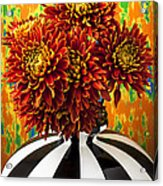 Red Mums In Striped Vase Acrylic Print by Garry Gay