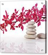 Red Orchid With Balance Stone Acrylic Print