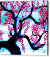 Red Plum Oriental Influence Acrylic Print