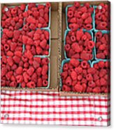 Red Raspberries Are Here Acrylic Print