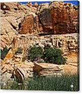 Red Rock Canyon The Tank Acrylic Print