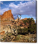 Red Rock Castle Acrylic Print