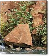 Red Rocks, Fall Colors And Creek, Oak Acrylic Print by Rich Reid