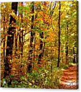 Red Run Trail Acrylic Print by Ed Smith