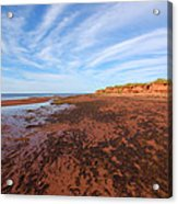 Red Sands Low Tide Acrylic Print