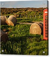 Red Telephone Booth Acrylic Print