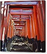 Red Torii Arches Over Steps At Inari Acrylic Print