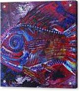 Redribfish Acrylic Print