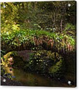 Reelig Bridge And Grotto Acrylic Print