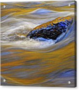 Reflected Color Acrylic Print