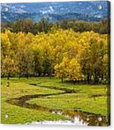 Reflected Seasons Acrylic Print