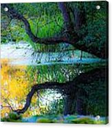Reflected Tree In Pastel Landscape Acrylic Print