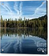 Reflecting Blue Acrylic Print