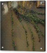 Reflecting On Beads Acrylic Print