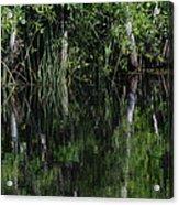 Reflecting Pool  Acrylic Print