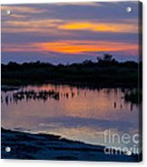 Reflection Of The Sunset Acrylic Print