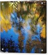 Reflection Perfection Acrylic Print