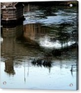 Reflection Tevere Acrylic Print