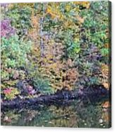 Reflections Of A Tapestry 2 Acrylic Print