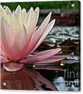Reflections Of Summer Acrylic Print
