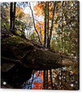 Reflections On Acadia Acrylic Print