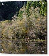 Reflections On Marshall Pond Acrylic Print