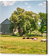 Reive Blvd Barn 15059c Acrylic Print