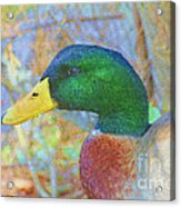 Relaxing By The Pond Acrylic Print